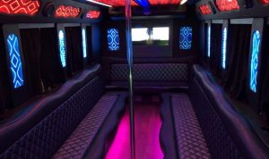 Party Bus Dancing Pole